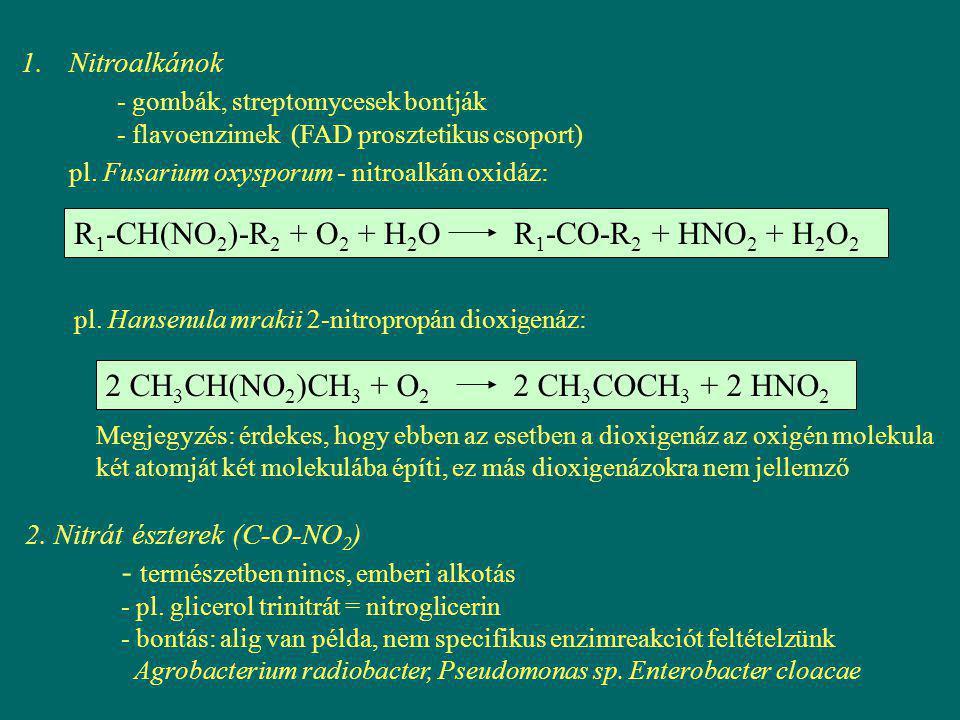 1.Nitroalkánok - gombák, streptomycesek bontják - flavoenzimek (FAD prosztetikus csoport) pl. Fusarium oxysporum - nitroalkán oxidáz: pl. Hansenula mr