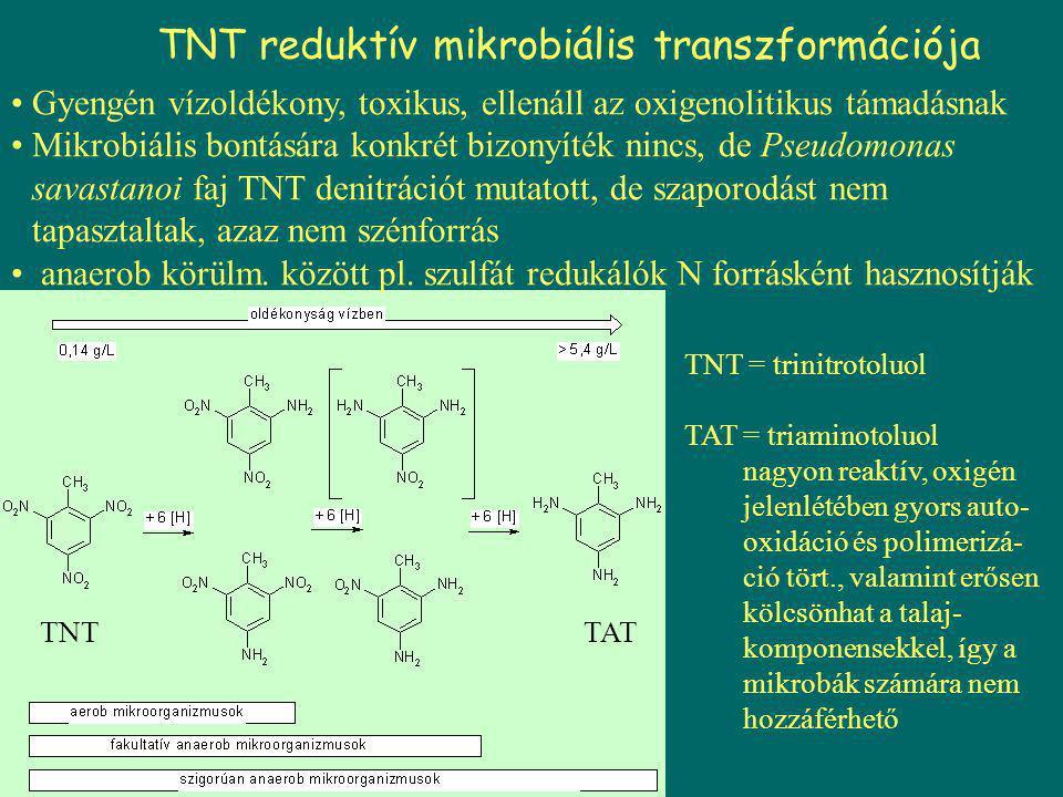 TNT reduktív mikrobiális transzformációja Gyengén vízoldékony, toxikus, ellenáll az oxigenolitikus támadásnak Mikrobiális bontására konkrét bizonyíték