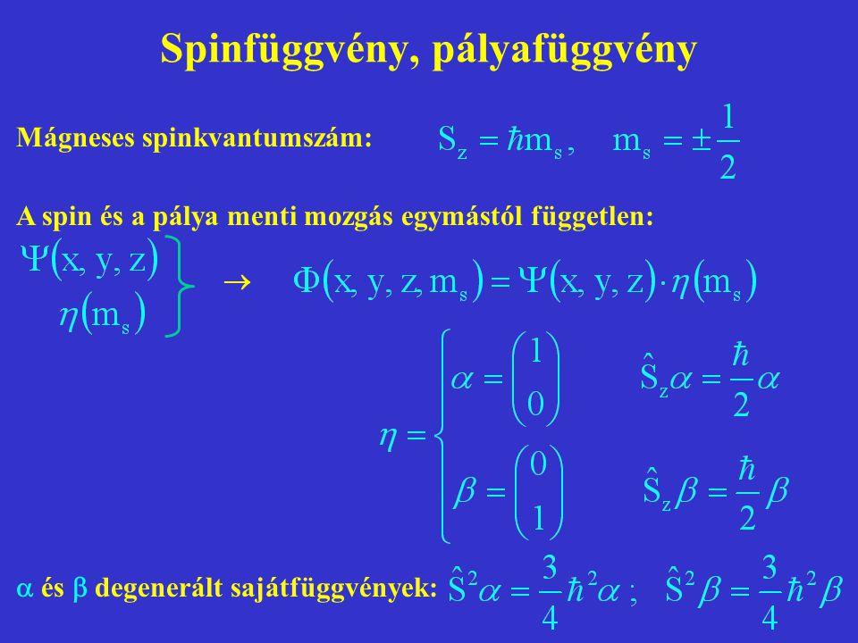 Spinfüggvény, pályafüggvény Mágneses spinkvantumszám:   és  degenerált sajátfüggvények: A spin és a pálya menti mozgás egymástól független: