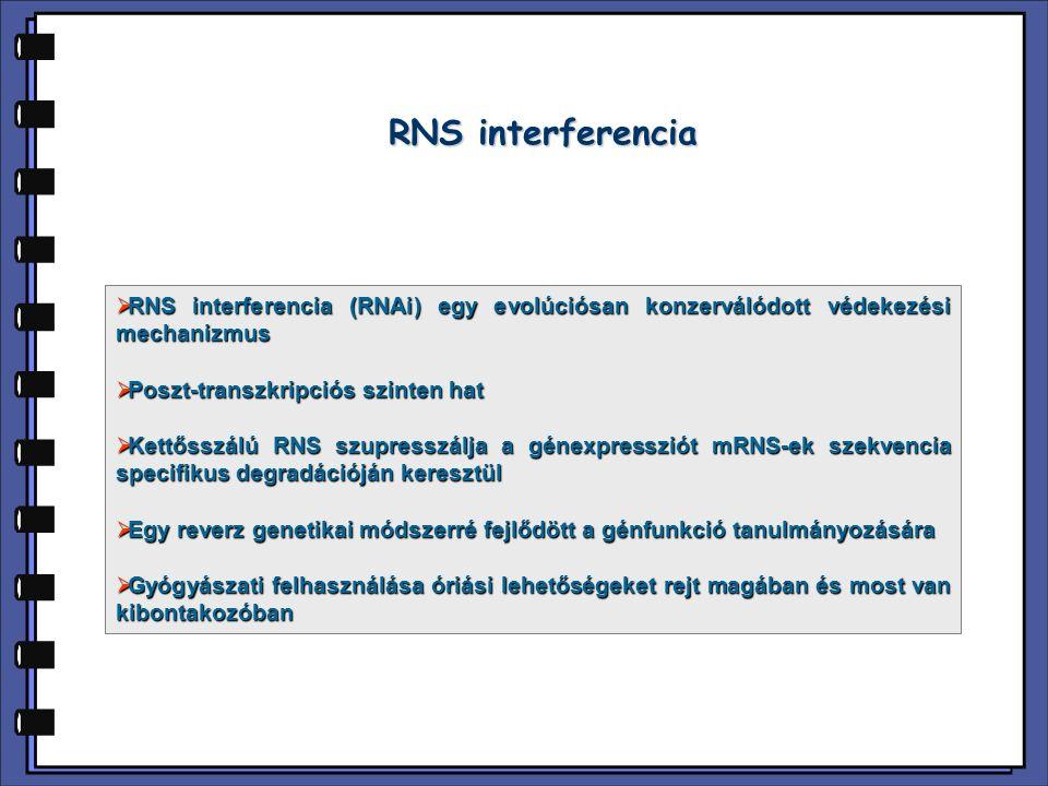 RNS interferencia  RNS interferencia (RNAi) egy evolúciósan konzerválódott védekezési mechanizmus  Poszt-transzkripciós szinten hat  Kettősszálú RN