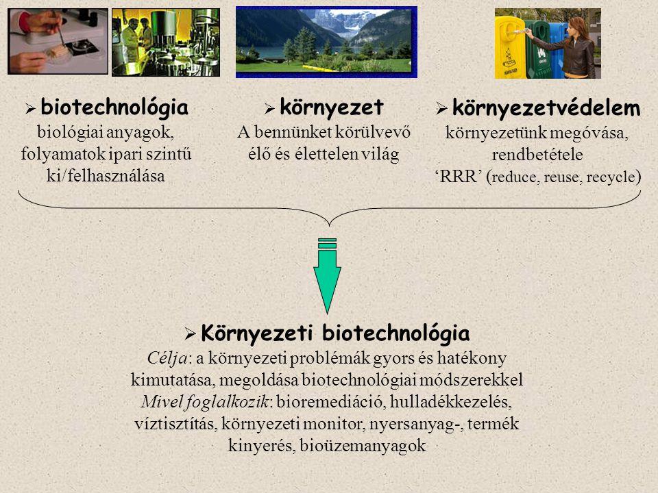  Környezeti biotechnológia Célja: a környezeti problémák gyors és hatékony kimutatása, megoldása biotechnológiai módszerekkel Mivel foglalkozik: bior