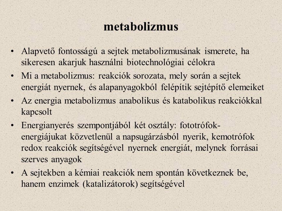metabolizmus Alapvető fontosságú a sejtek metabolizmusának ismerete, ha sikeresen akarjuk használni biotechnológiai célokra Mi a metabolizmus: reakció