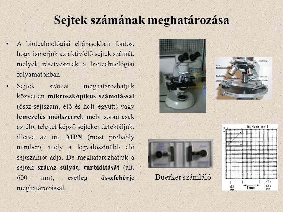 Sejtek számának meghatározása A biotechnológiai eljárásokban fontos, hogy ismerjük az aktív/élő sejtek számát, melyek résztvesznek a biotechnológiai f