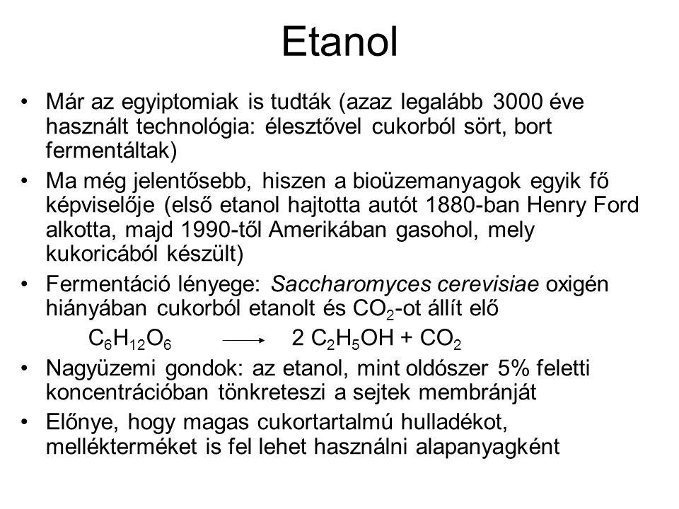 Etanol Már az egyiptomiak is tudták (azaz legalább 3000 éve használt technológia: élesztővel cukorból sört, bort fermentáltak) Ma még jelentősebb, his