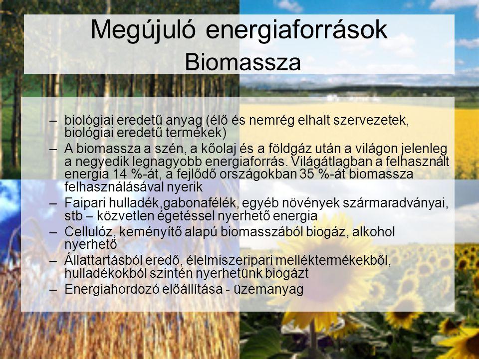 Megújuló energiaforrások Biomassza –biológiai eredetű anyag (élő és nemrég elhalt szervezetek, biológiai eredetű termékek) –A biomassza a szén, a kőol