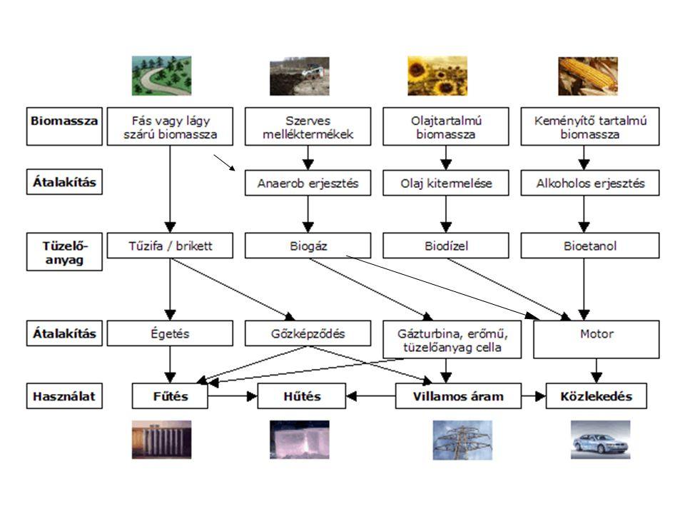 Biohidrogén Biotechnológiai előállítása : 1.víz bontásából 2.a nitrogén fixálás mellékterméke 3.biomassza fermentációja során H+H+ H2H2 H 2 fejlesztés redukció ENERGIA H2H2 H 2 fogyasztás oxidáció e-e- REDUKÁLÓ SZER hidrogén alapú technológiák