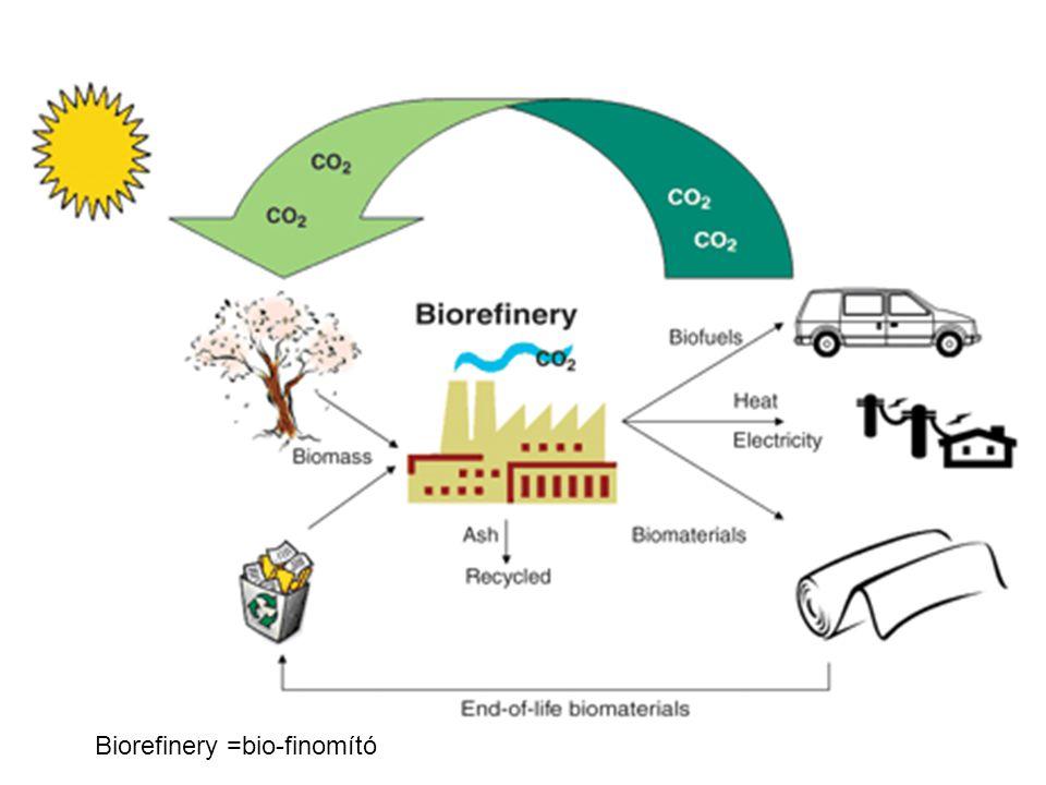 Biodízel Telítetlen zsírsavakból előállított metil észter Alapanyagok: növényi olajok (kb 97%-a triglicerid), állati zsiradékok, használt sütőolaj –A növényi olajok üzemanyagként használata szempontjából hátrányos, hogy nagyobb a viszkozitása, ill.