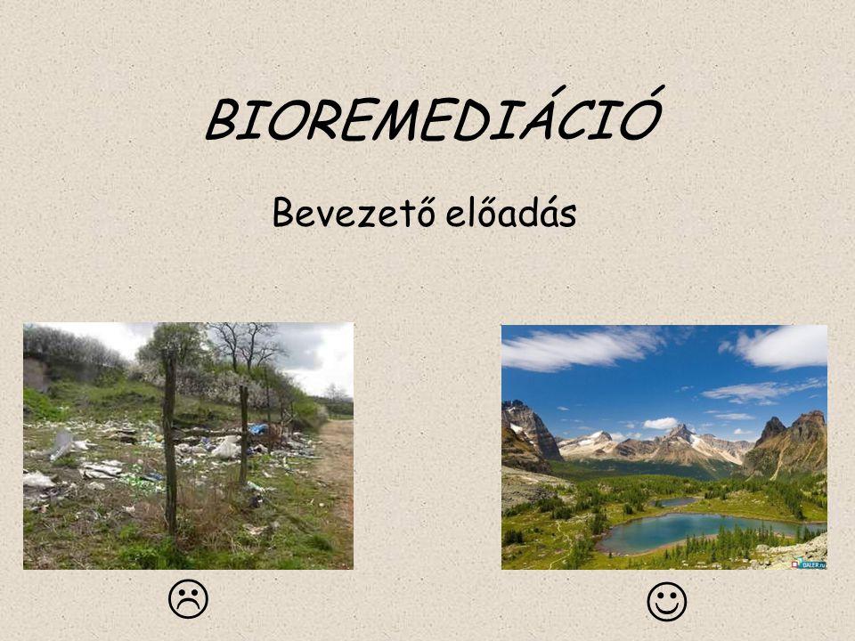 BIOREMEDIÁCIÓ Bevezető előadás 
