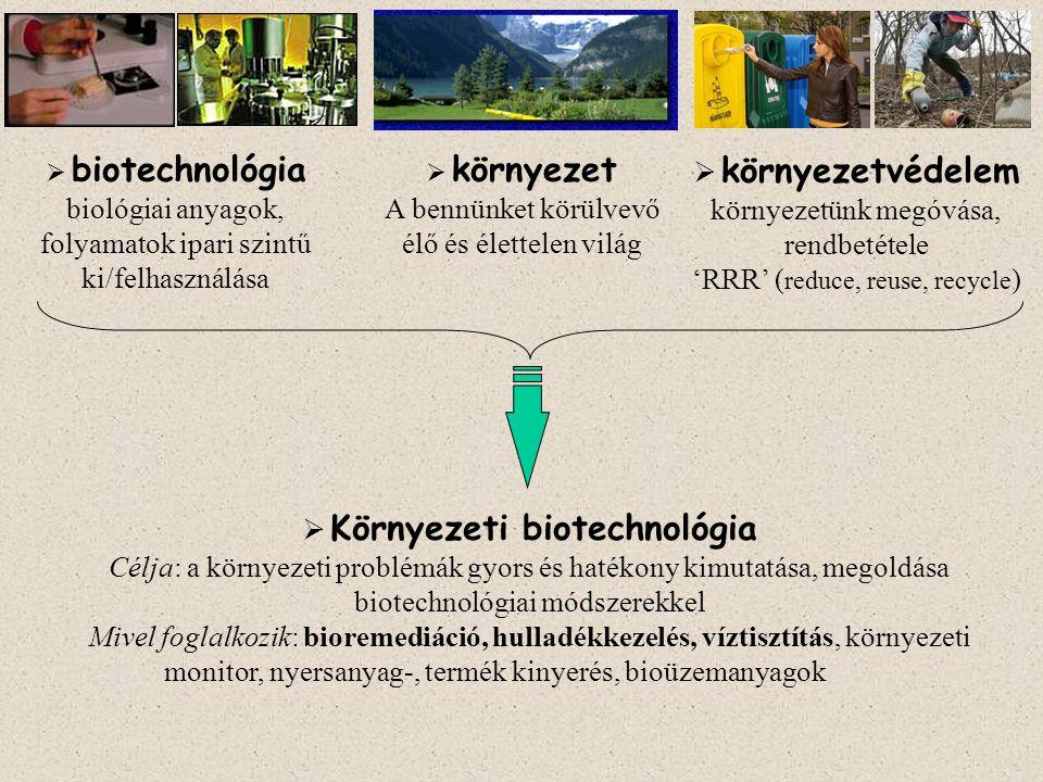  Környezeti biotechnológia Célja: a környezeti problémák gyors és hatékony kimutatása, megoldása biotechnológiai módszerekkel Mivel foglalkozik: bioremediáció, hulladékkezelés, víztisztítás, környezeti monitor, nyersanyag-, termék kinyerés, bioüzemanyagok  környezet A bennünket körülvevő élő és élettelen világ  biotechnológia biológiai anyagok, folyamatok ipari szintű ki/felhasználása  környezetvédelem környezetünk megóvása, rendbetétele 'RRR' ( reduce, reuse, recycle )