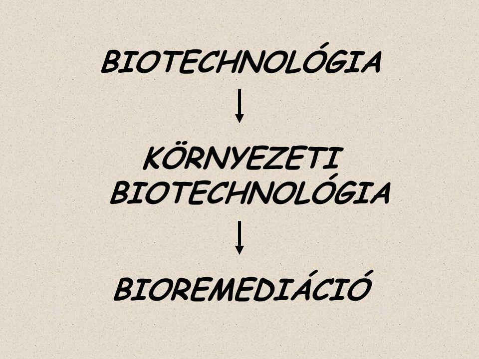 BIOTECHNOLÓGIA KÖRNYEZETI BIOTECHNOLÓGIA BIOREMEDIÁCIÓ