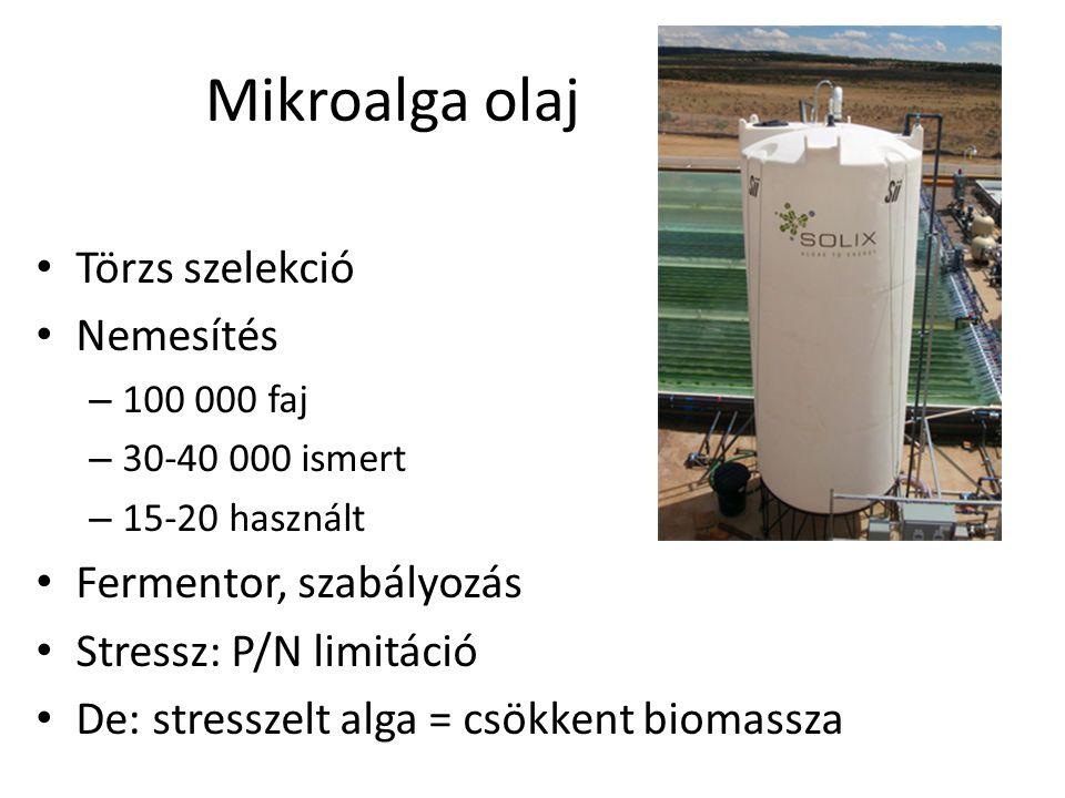 Mikroalga olaj Törzs szelekció Nemesítés – 100 000 faj – 30-40 000 ismert – 15-20 használt Fermentor, szabályozás Stressz: P/N limitáció De: stresszel