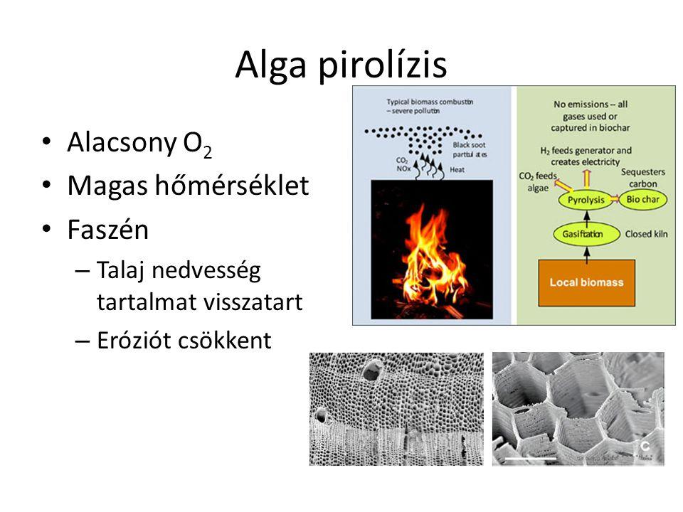 Alga pirolízis Alacsony O 2 Magas hőmérséklet Faszén – Talaj nedvesség tartalmat visszatart – Eróziót csökkent