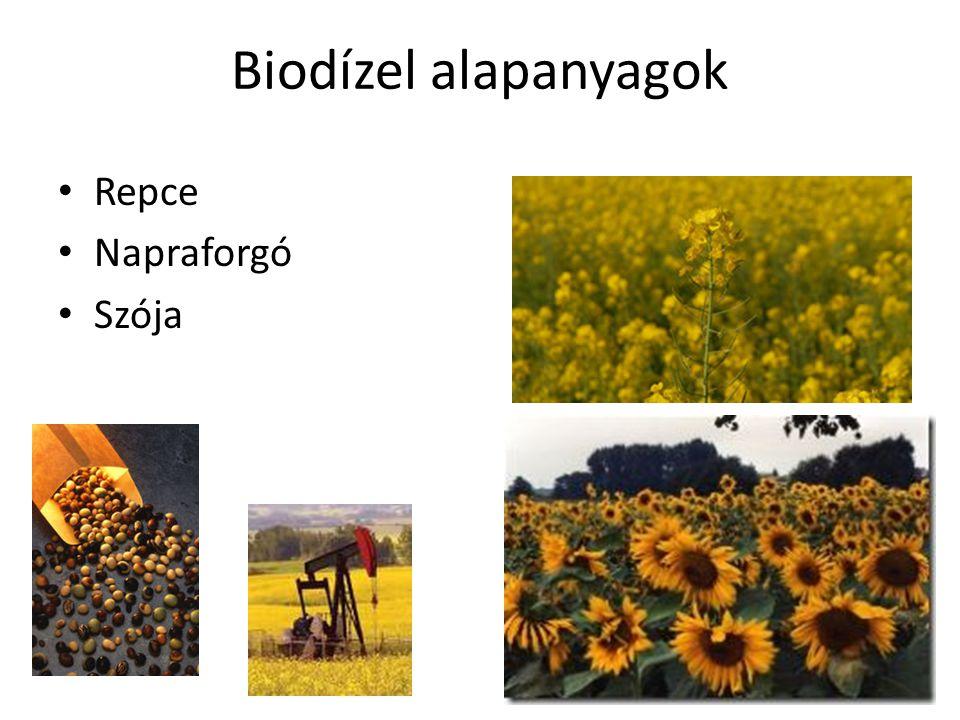 Biodízel alapanyagok Repce Napraforgó Szója