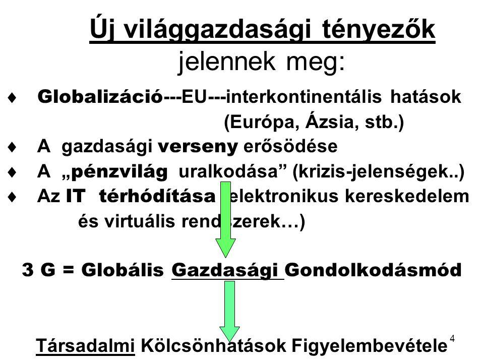 4 Új világgazdasági tényezők jelennek meg:  Globalizáció ---EU---interkontinentális hatások (Európa, Ázsia, stb.)  A gazdasági verseny erősödése  A