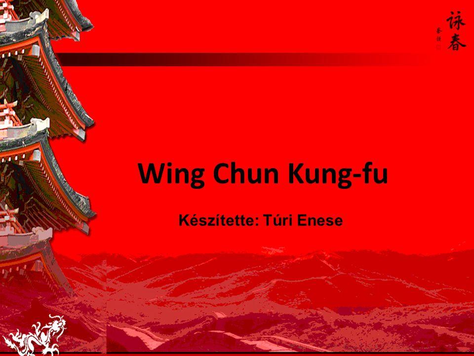 Wing Chun Kung-fu Készítette: Túri Enese