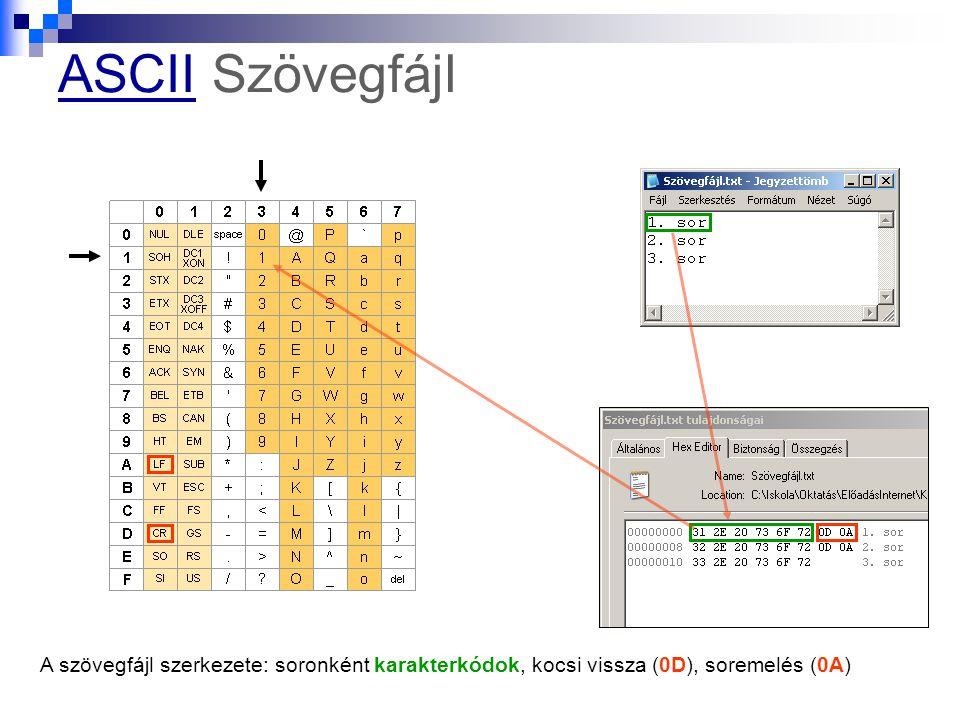 ASCIIASCII Szövegfájl A szövegfájl szerkezete: soronként karakterkódok, kocsi vissza (0D), soremelés (0A)