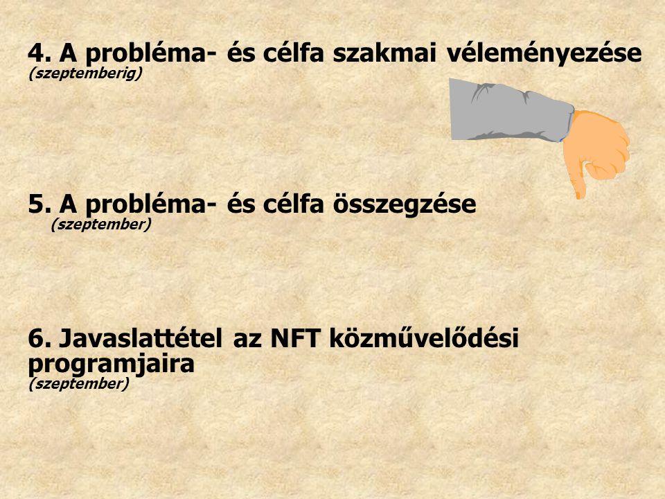 4. A probléma- és célfa szakmai véleményezése (szeptemberig) 5. A probléma- és célfa összegzése (szeptember) 6. Javaslattétel az NFT közművelődési pro
