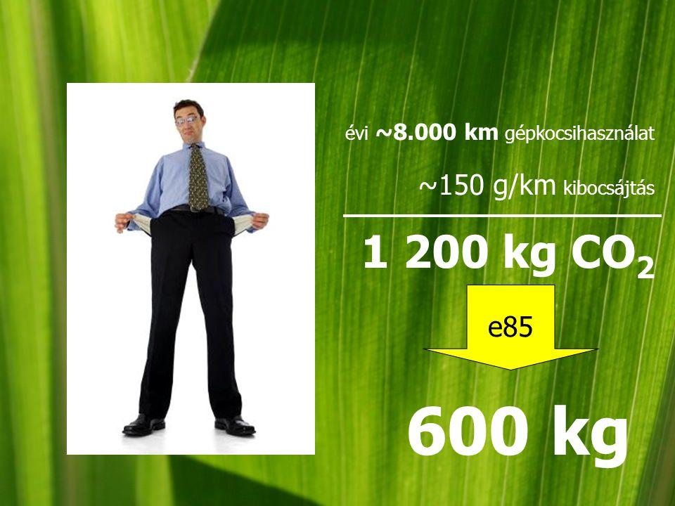 évi ~8.000 km gépkocsihasználat ~150 g/km kibocsájtás 1 200 kg CO 2 e85 600 kg