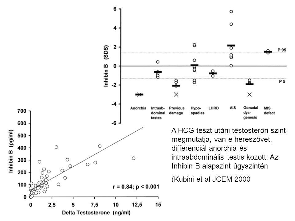 A HCG teszt utáni testosteron szint megmutatja, van-e hereszövet, differenciál anorchia és intraabdominális testis között. Az Inhibin B alapszint úgys