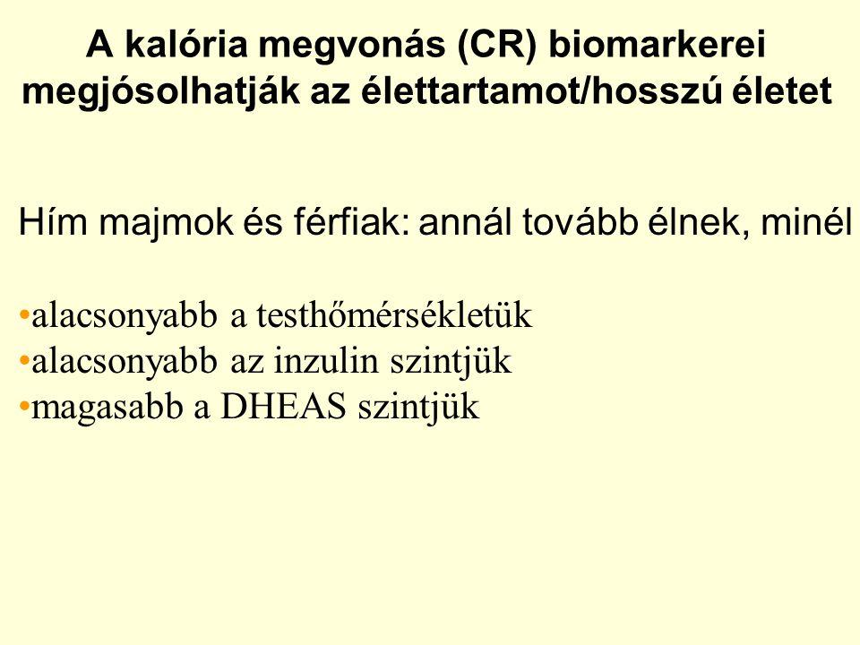 A kalória megvonás (CR) biomarkerei megjósolhatják az élettartamot/hosszú életet Hím majmok és férfiak: annál tovább élnek, minél alacsonyabb a testhőmérsékletük alacsonyabb az inzulin szintjük magasabb a DHEAS szintjük