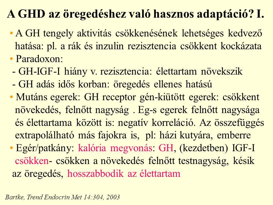 A GHD az öregedéshez való hasznos adaptáció.I.