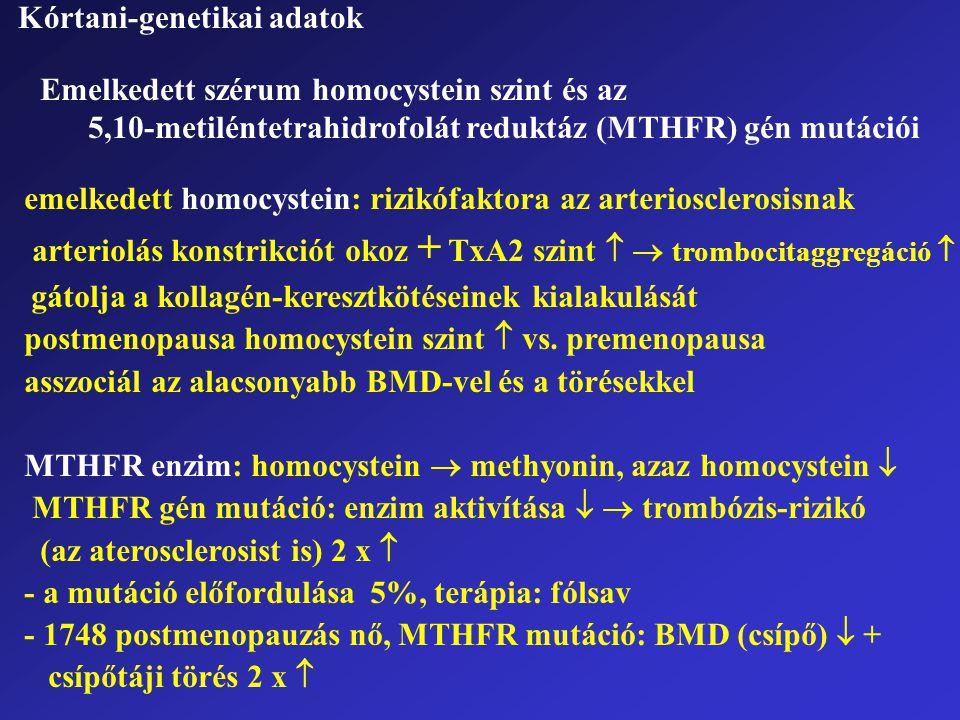 Emelkedett szérum homocystein szint és az 5,10-metiléntetrahidrofolát reduktáz (MTHFR) gén mutációi Kórtani-genetikai adatok emelkedett homocystein: r