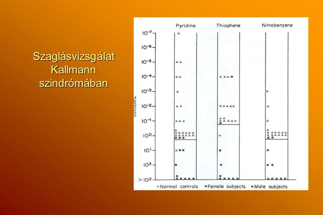 Szaglásvizsgálat Kallmann szindrómában