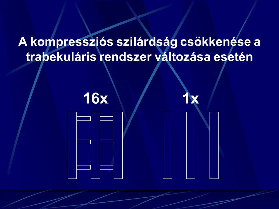 16x1x A kompressziós szilárdság csökkenése a trabekuláris rendszer változása esetén