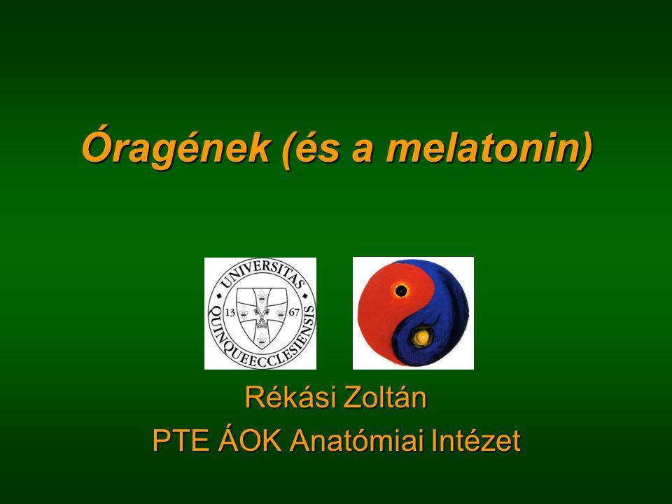 Óragének (és a melatonin) Rékási Zoltán PTE ÁOK Anatómiai Intézet
