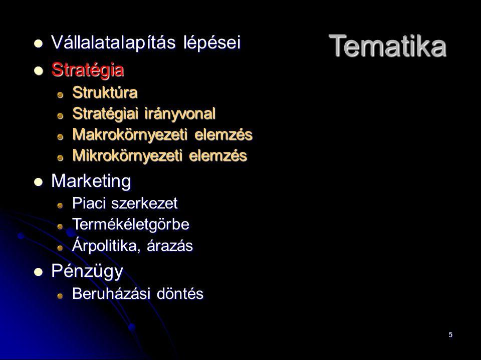 5 Vállalatalapítás lépései Vállalatalapítás lépései Stratégia StratégiaStruktúra Stratégiai irányvonal Makrokörnyezeti elemzés Mikrokörnyezeti elemzés Marketing Marketing Piaci szerkezet Termékéletgörbe Árpolitika, árazás Pénzügy Pénzügy Beruházási döntés Tematika