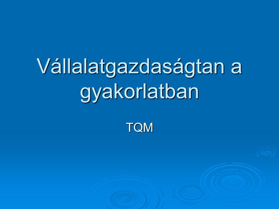 Vállalatgazdaságtan a gyakorlatban TQM