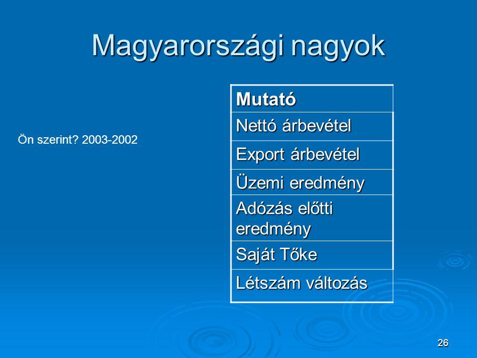 26 Magyarországi nagyok Ön szerint? 2003-2002 Mutató Nettó árbevétel Export árbevétel Üzemi eredmény Adózás előtti eredmény Saját Tőke Létszám változá