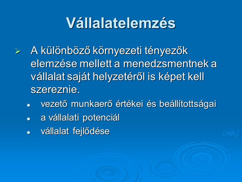 Vállalatelemzés  A különböző környezeti tényezők elemzése mellett a menedzsmentnek a vállalat saját helyzetéről is képet kell szereznie.