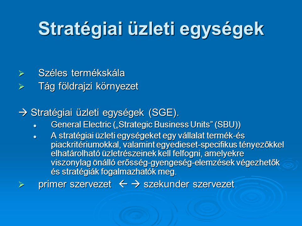 Stratégiai üzleti egységek  Széles termékskála  Tág földrajzi környezet  Stratégiai üzleti egységek (SGE).