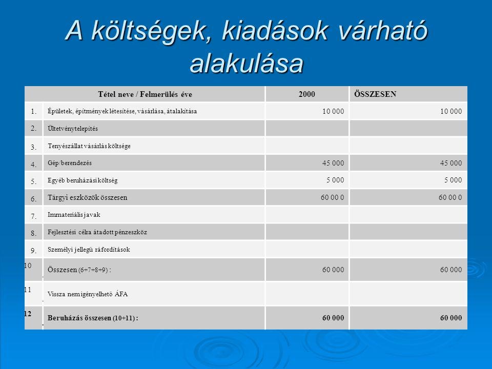A költségek, kiadások várható alakulása Tétel neve / Felmerülés éve2000ÖSSZESEN 1. Épületek, építmények létesítése, vásárlása, átalakítása 10 000 2. Ü