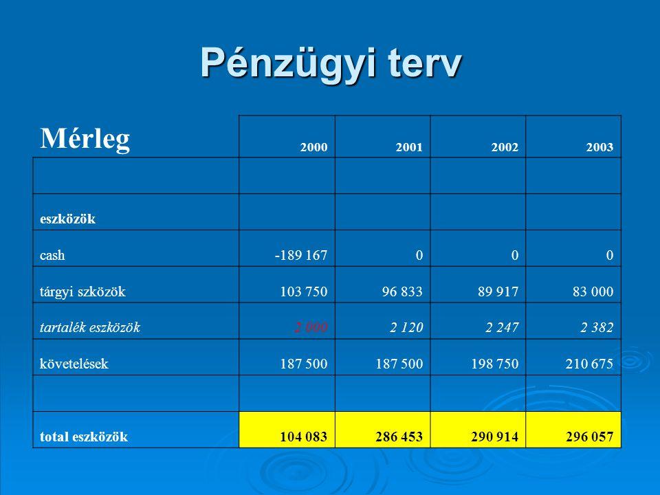 Pénzügyi terv Mérleg 2000200120022003 eszközök cash-189 167000 tárgyi szközök103 75096 83389 91783 000 tartalék eszközök2 0002 1202 2472 382 követelés
