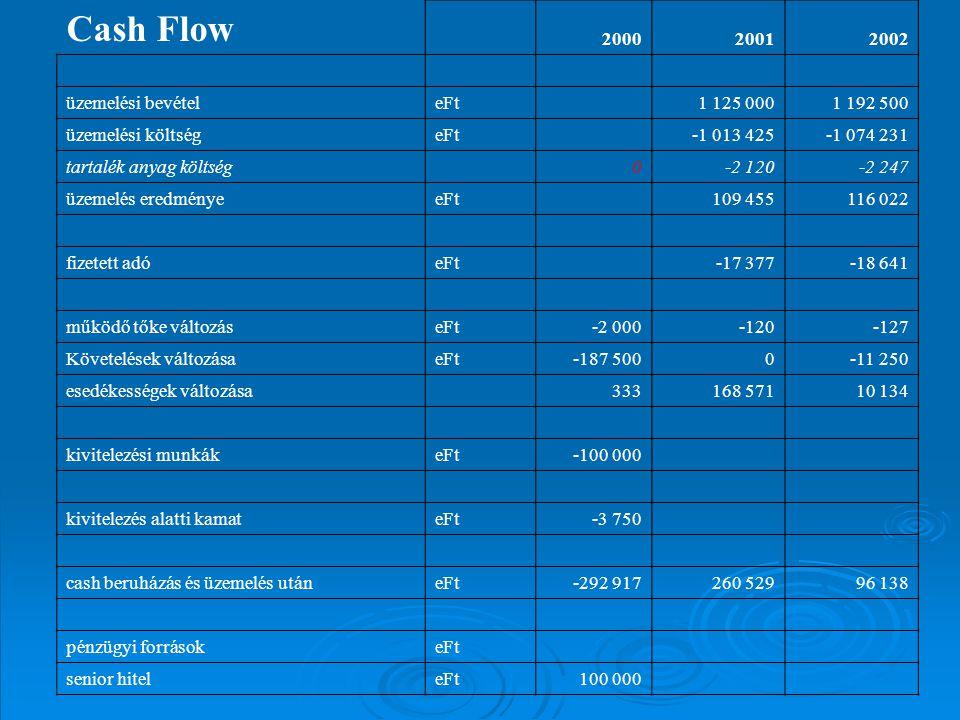 Cash Flow 200020012002 üzemelési bevételeFt 1 125 0001 192 500 üzemelési költségeFt -1 013 425-1 074 231 tartalék anyag költség 0-2 120-2 247 üzemelés eredményeeFt 109 455116 022 fizetett adóeFt -17 377-18 641 működő tőke változáseFt-2 000-120-127 Követelések változásaeFt-187 5000-11 250 esedékességek változása 333168 57110 134 kivitelezési munkákeFt-100 000 kivitelezés alatti kamateFt-3 750 cash beruházás és üzemelés utáneFt-292 917260 52996 138 pénzügyi forrásokeFt senior hiteleFt100 000