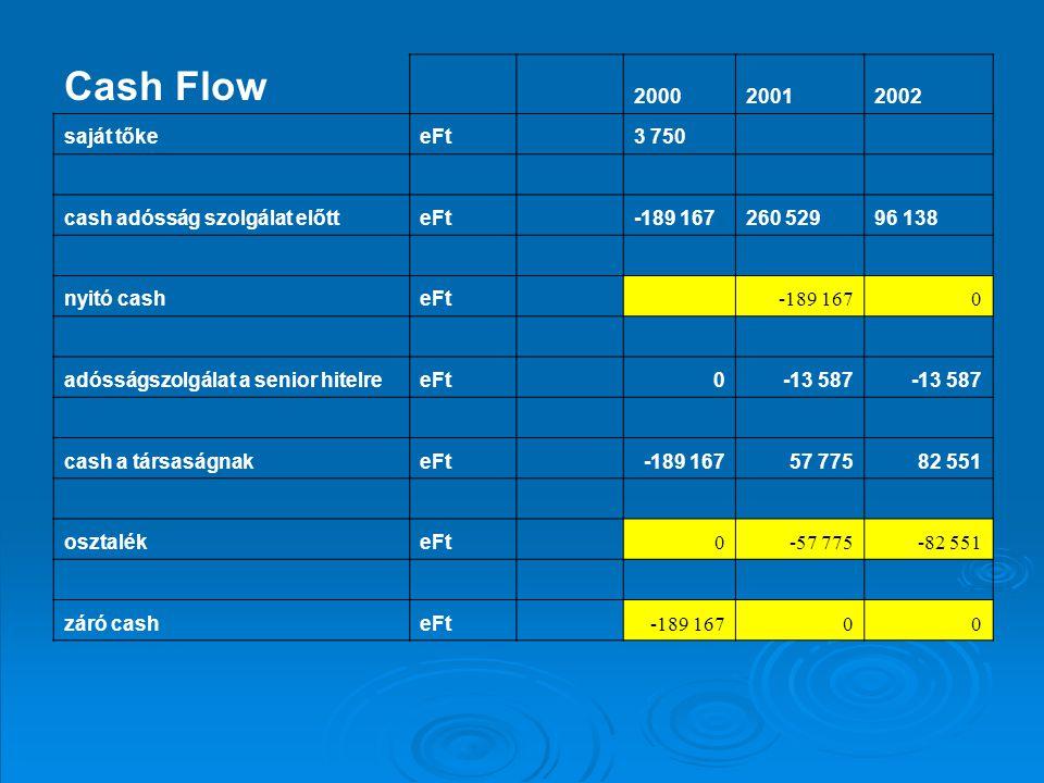 Cash Flow 200020012002 saját tőkeeFt 3 750 cash adósság szolgálat előtteFt -189 167260 52996 138 nyitó casheFt -189 1670 adósságszolgálat a senior hitelreeFt 0-13 587 cash a társaságnakeFt -189 16757 77582 551 osztalékeFt 0-57 775-82 551 záró casheFt -189 16700