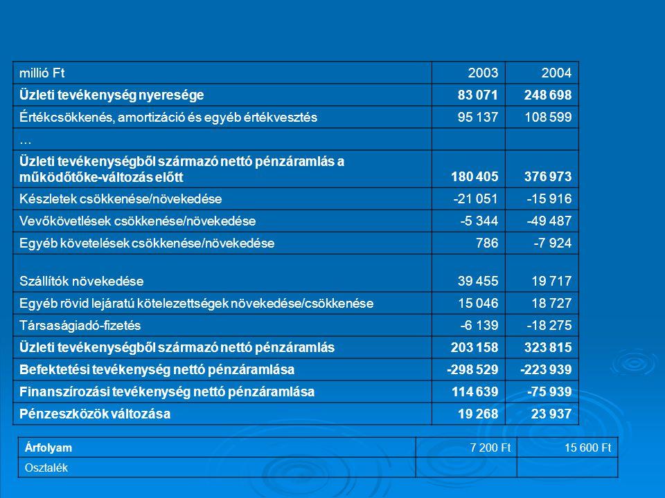 millió Ft20032004 Üzleti tevékenység nyeresége83 071248 698 Értékcsökkenés, amortizáció és egyéb értékvesztés95 137108 599 … Üzleti tevékenységből szá