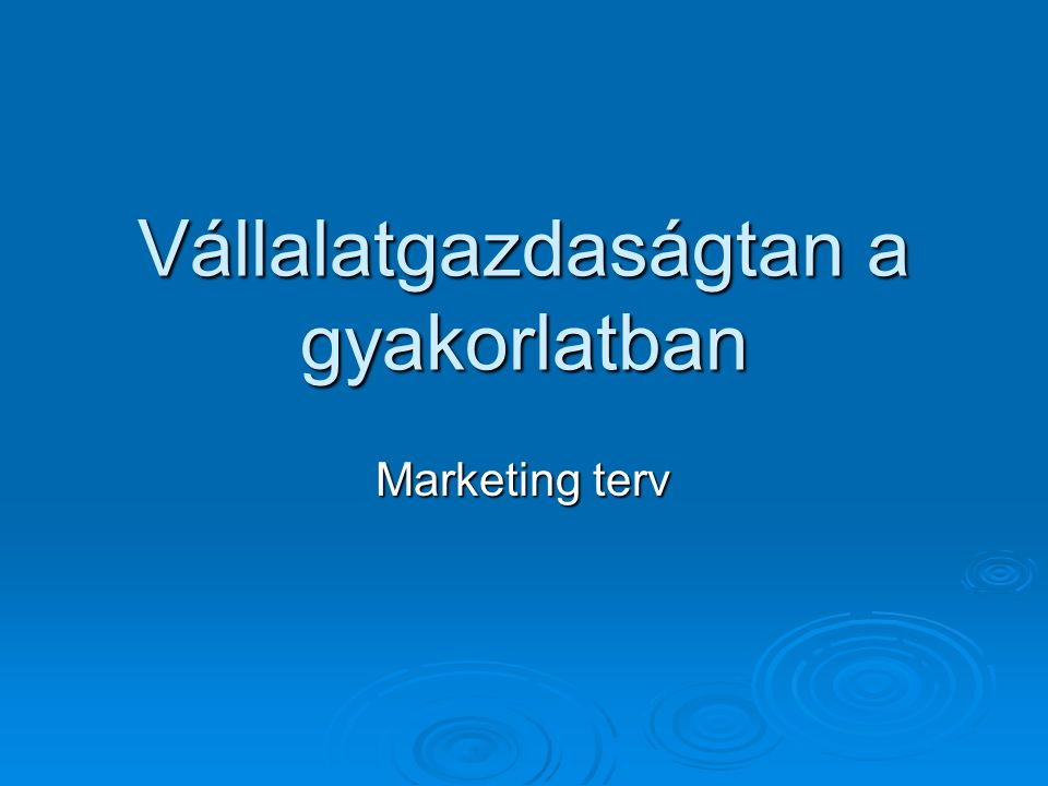 Vállalatgazdaságtan a gyakorlatban Marketing terv
