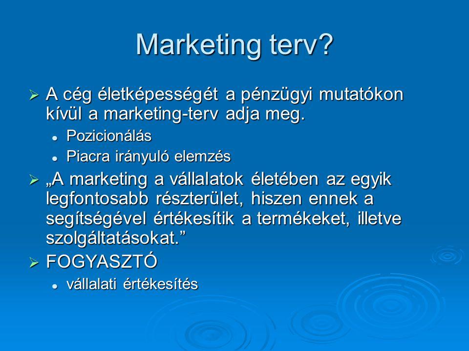Marketing terv?  A cég életképességét a pénzügyi mutatókon kívül a marketing-terv adja meg. Pozicionálás Pozicionálás Piacra irányuló elemzés Piacra