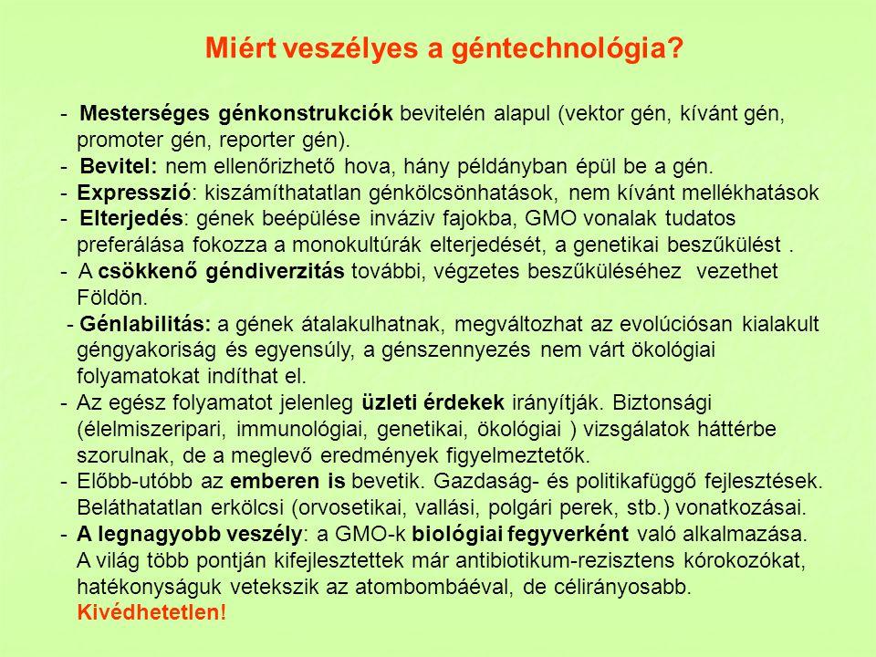 Miért veszélyes a géntechnológia? - Mesterséges génkonstrukciók bevitelén alapul (vektor gén, kívánt gén, promoter gén, reporter gén). - Bevitel: nem