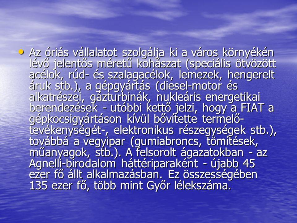 Az óriás vállalatot szolgálja ki a város környékén lévő jelentős méretű kohászat (speciális ötvözött acélok, rúd- és szalagacélok, lemezek, hengerelt áruk stb.), a gépgyártás (diesel-motor és alkatrészei, gázturbinák, nukleáris energetikai berendezések - utóbbi kettő jelzi, hogy a FIAT a gépkocsigyártáson kívül bővítette termelő- tevékenységét-, elektronikus részegységek stb.), továbbá a vegyipar (gumiabroncs, tömítések, műanyagok, stb.).