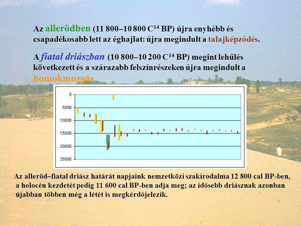 Az alleröd–fiatal driász határát napjaink nemzetközi szakirodalma 12 800 cal BP-ben, a holocén kezdetét pedig 11 600 cal BP-ben adja meg; az idősebb d