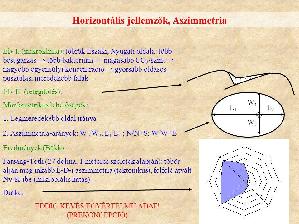 Horizontális jellemzők, Aszimmetria Elv I. (mikroklíma): töbrök Északi, Nyugati oldala: több besugárzás  több baktérium  magasabb CO 2 -szint  nagy