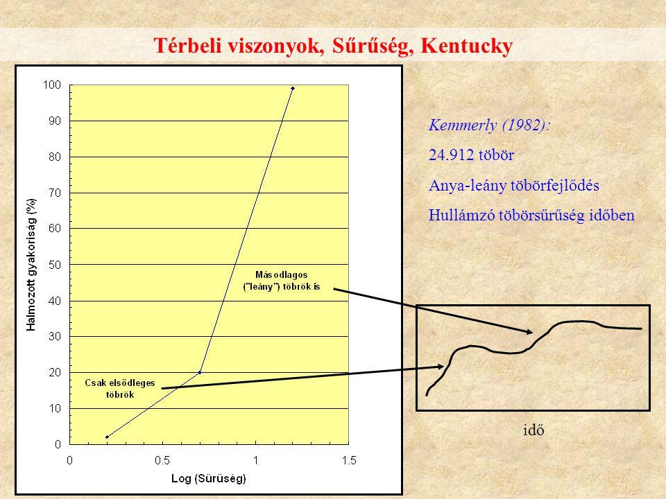 Térbeli viszonyok, Sűrűség, Kentucky Kemmerly (1982): 24.912 töbör Anya-leány töbörfejlődés Hullámzó töbörsűrűség időben idő