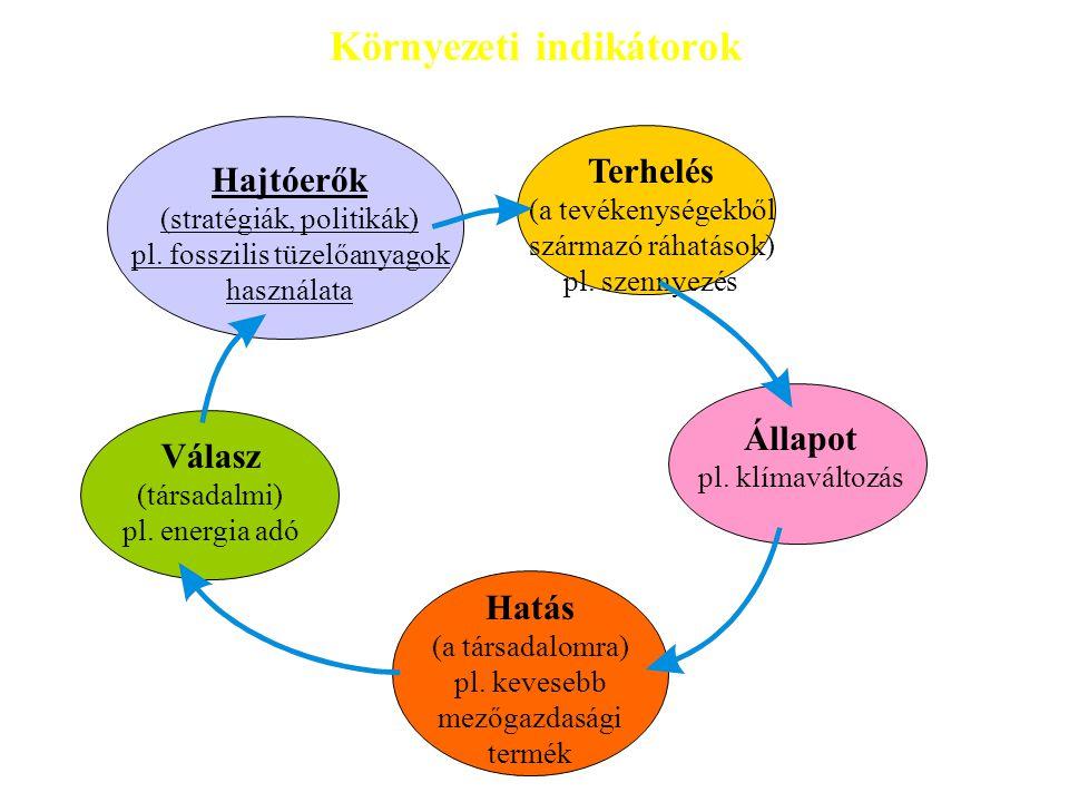 Környezeti indikátorok Terhelés (a tevékenységekből származó ráhatások) pl. szennyezés Válasz (társadalmi) pl. energia adó Hatás (a társadalomra) pl.