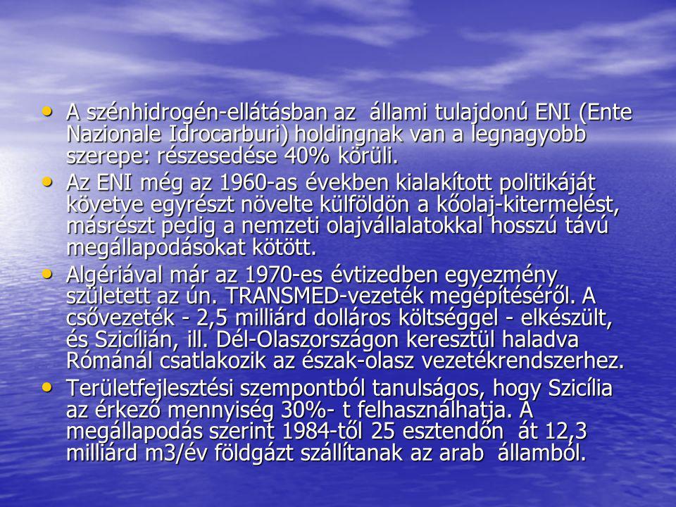 A szénhidrogén-ellátásban az állami tulajdonú ENI (Ente Nazionale Idrocarburi) holdingnak van a legnagyobb szerepe: részesedése 40% körüli.