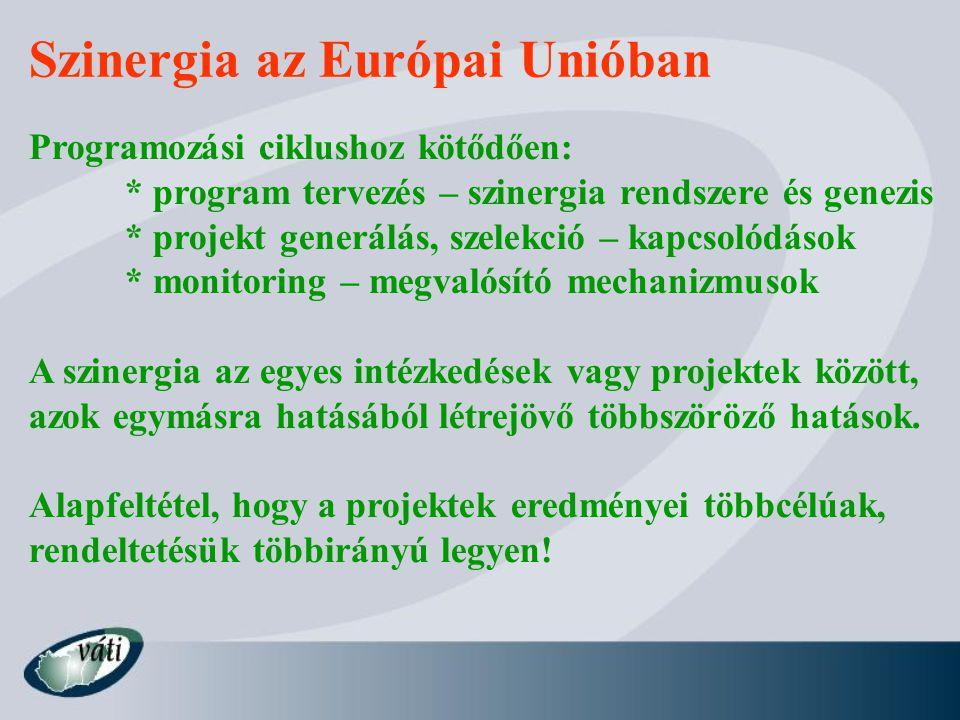 Szinergia az Európai Unióban Programozási ciklushoz kötődően: * program tervezés – szinergia rendszere és genezis * projekt generálás, szelekció – kap
