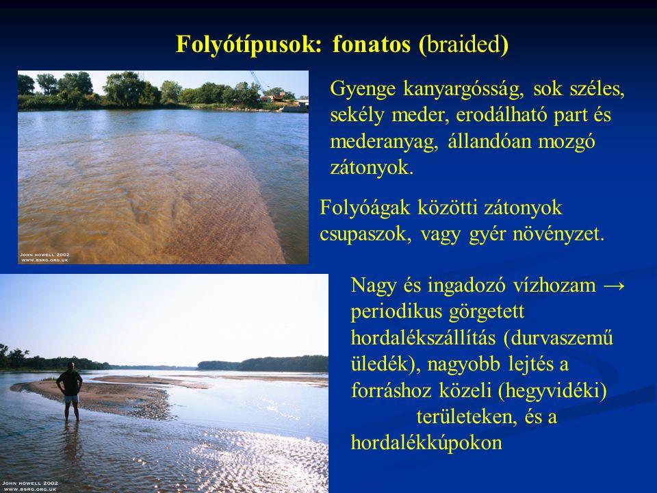 Folyótípusok: fonatos (braided) Gyenge kanyargósság, sok széles, sekély meder, erodálható part és mederanyag, állandóan mozgó zátonyok.